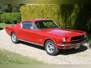 1966 66 Ford Mustang GT Fastback Wanted (picture 22 of 30)