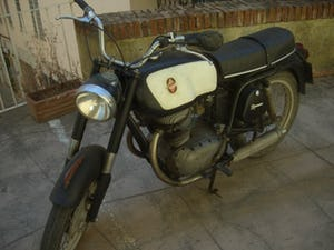 Gilera 300 extra 1967 twin For Sale (picture 2 of 5)