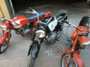 Gilera 300 extra 1967 twin For Sale (picture 4 of 5)