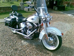 1900 harley fatboy softail etc anything (picture 5 of 6)