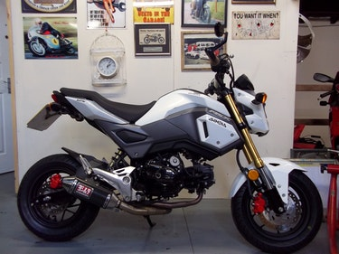 Picture of 2016 Honda 125 MSX Grom For Sale