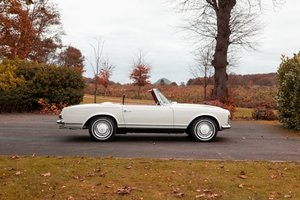 Picture of 1966 MERCEDES 230SL LHD AUTO/PS 'BEST IN SHOW' WINNER For Sale