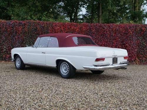 1968 Mercedes 250SE Covertible Fully Restored! For Sale (picture 2 of 6)