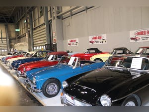 1994 Largest Collection of MGs FOR SALE in the UK.  For Sale (picture 2 of 6)