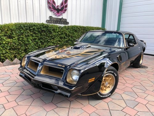 1976 Pontiac Trans Am SE 50th Anniversary For Sale (picture 1 of 6)