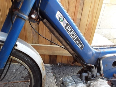 Picture of 1976 Puch Maxi Moped For Sale