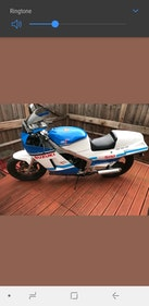 Picture of 1986 Suzuki rg500 gamma For Sale