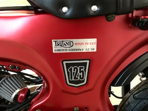 2019 Triton Manix ST-125 Limited Edition For Sale (picture 4 of 6)