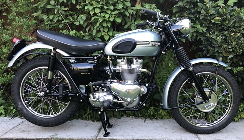 Picture of 1956 Triumph Trophy TR6 For Sale