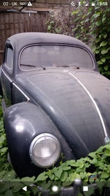Picture of Vintage Beetle
