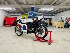 1979 Yamaha TZ350 RACER For Sale (picture 18 of 25)